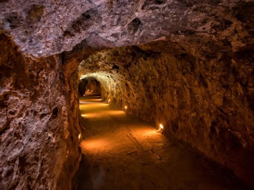 Zambia plans to revoke Glencore's Mopani Copper Mines licenses